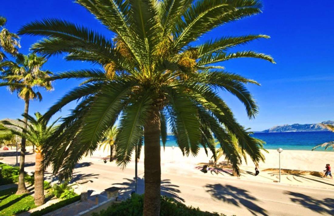 01-202  Moderne Ferienwohnung Mallorca Norden Bild 2