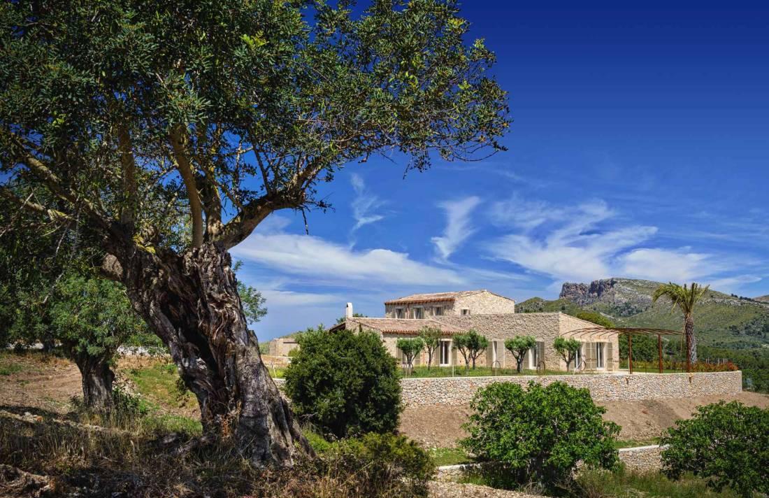 01-307 Design Finca Mallorca Nordosten Bild 5