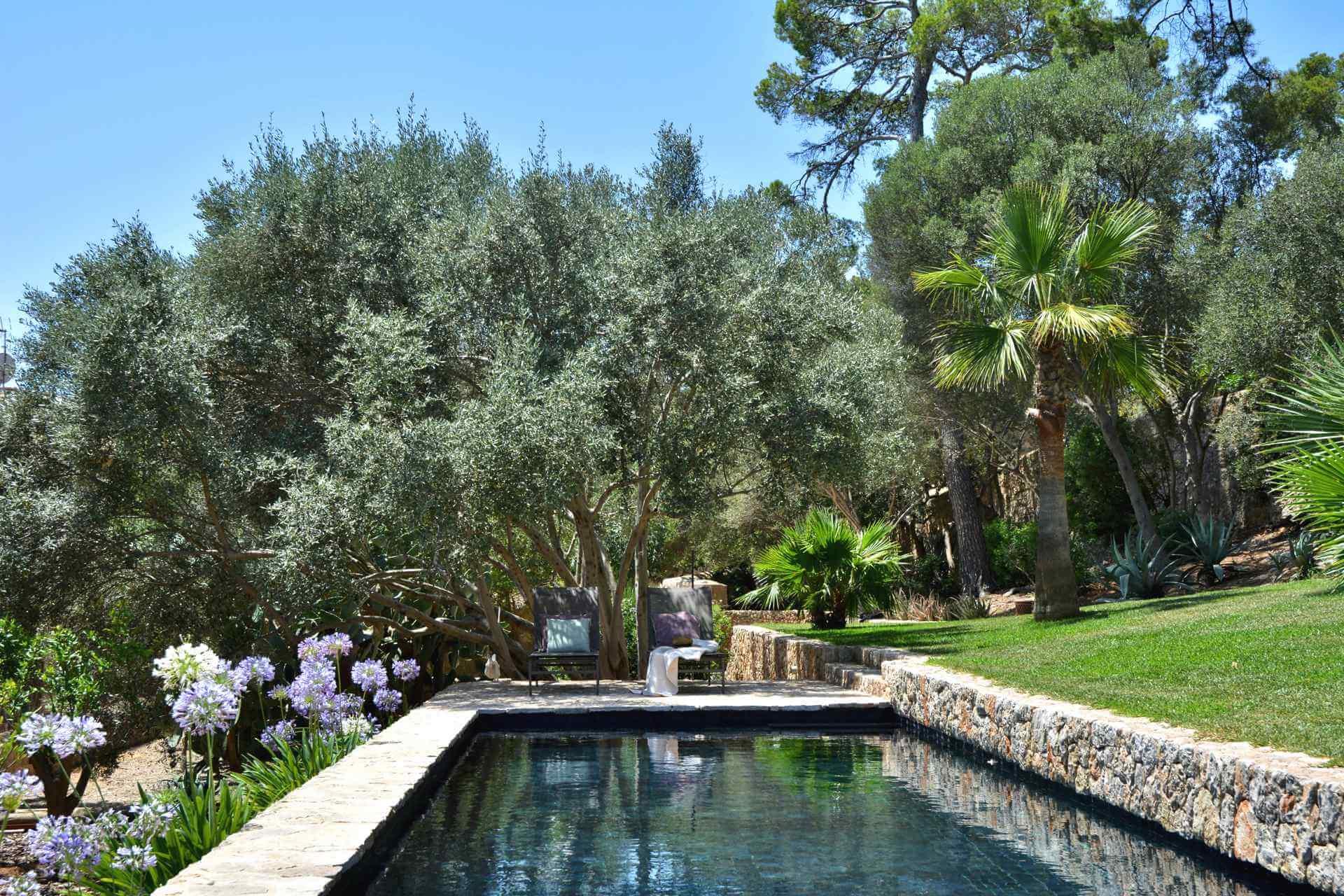 01-323 exklusives Herrenhaus Südwesten Mallorca Bild 5