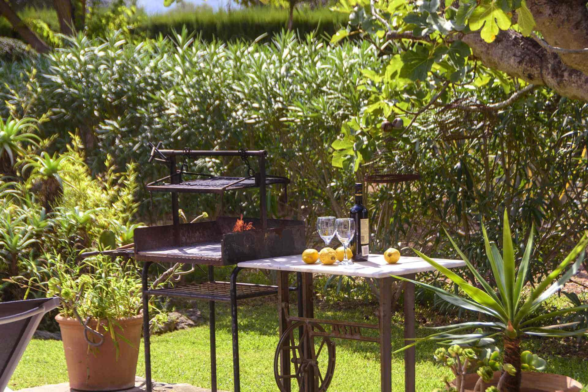 01-161 Finca mit hübschem Garten Mallorca Norden Bild 5