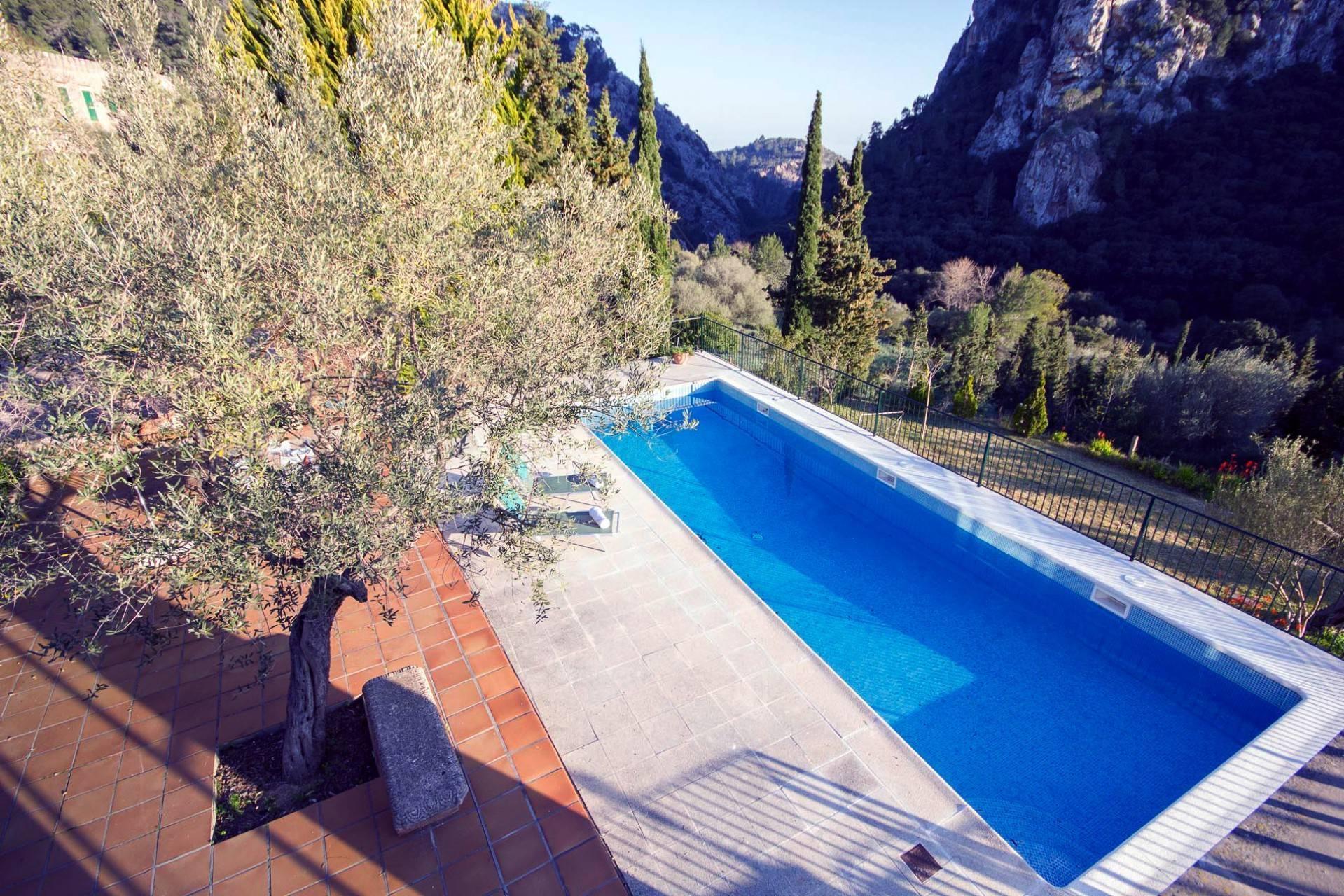 01-258 Charmante Finca Mallorca Westen Bild 5
