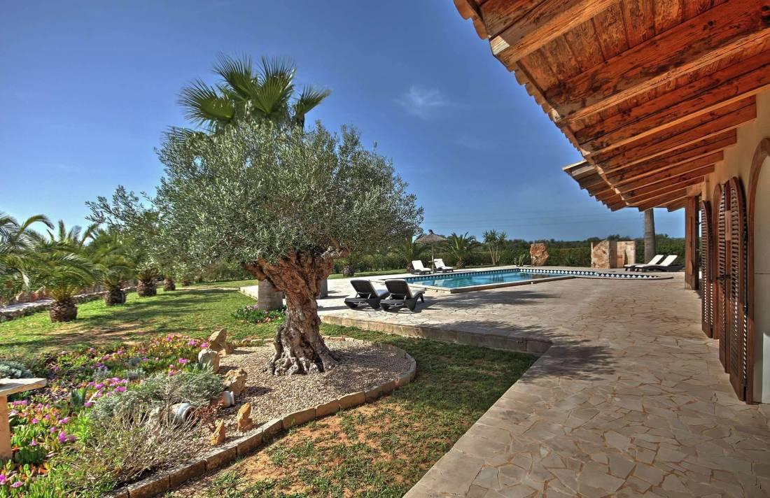 Kleine finca mallorca s den in campos luxus feriendomizile for Mallorca ferienhaus mieten