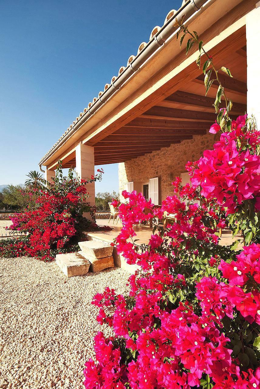 01-213 Moderne Finca Mallorca Norden Bild 6