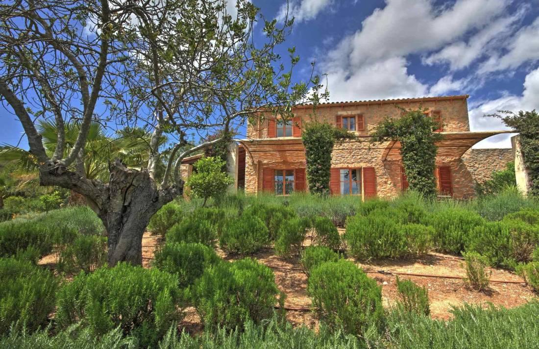 01-51 Authentic Finca Mallorca Northeast Bild 7