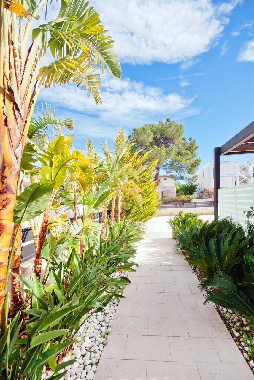 01-204 Große Ferienwohnung Mallorca Norden Bild 7