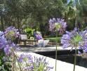 01-323 exklusives Herrenhaus Südwesten Mallorca Vorschaubild 8