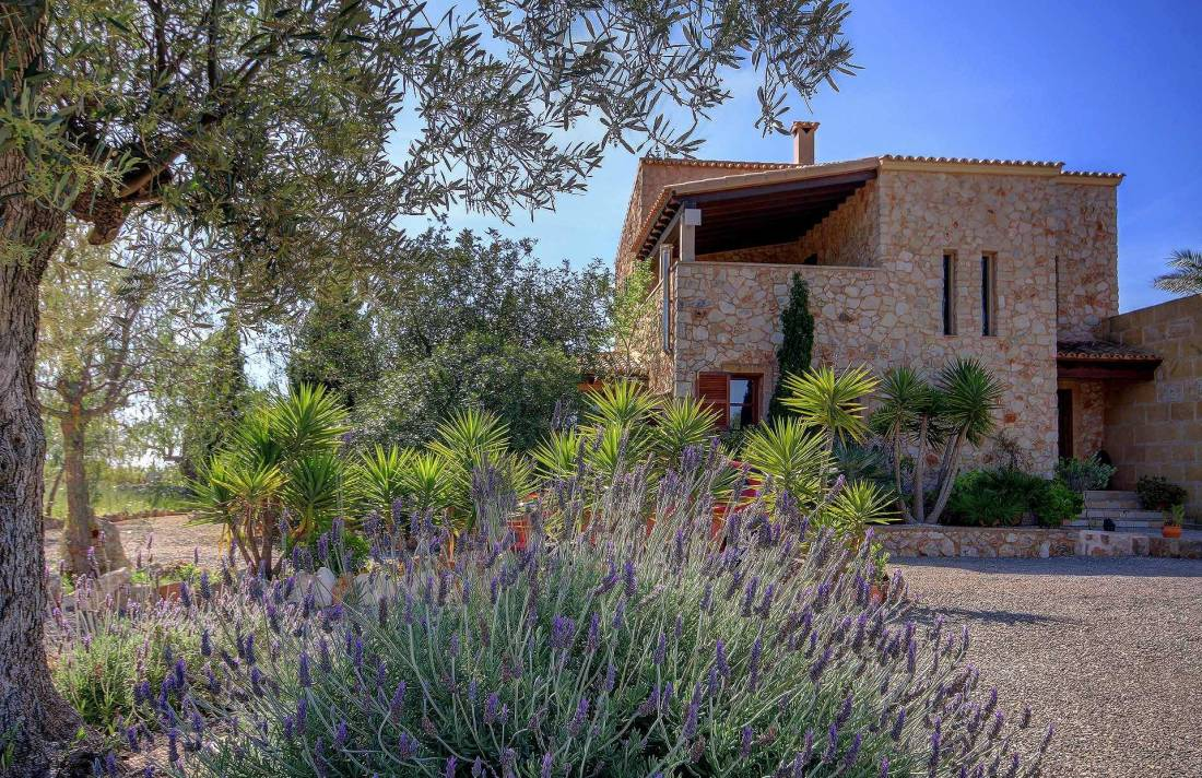 01-259 Finca Mallorca Süden mit Pool Bild 9