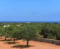 01-129 Child friendly Finca East Mallorca Vorschaubild 10