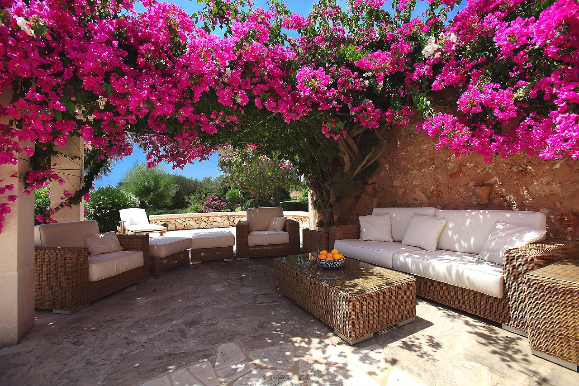 01-131 Restaurierte Finca Mallorca Osten Bild 12