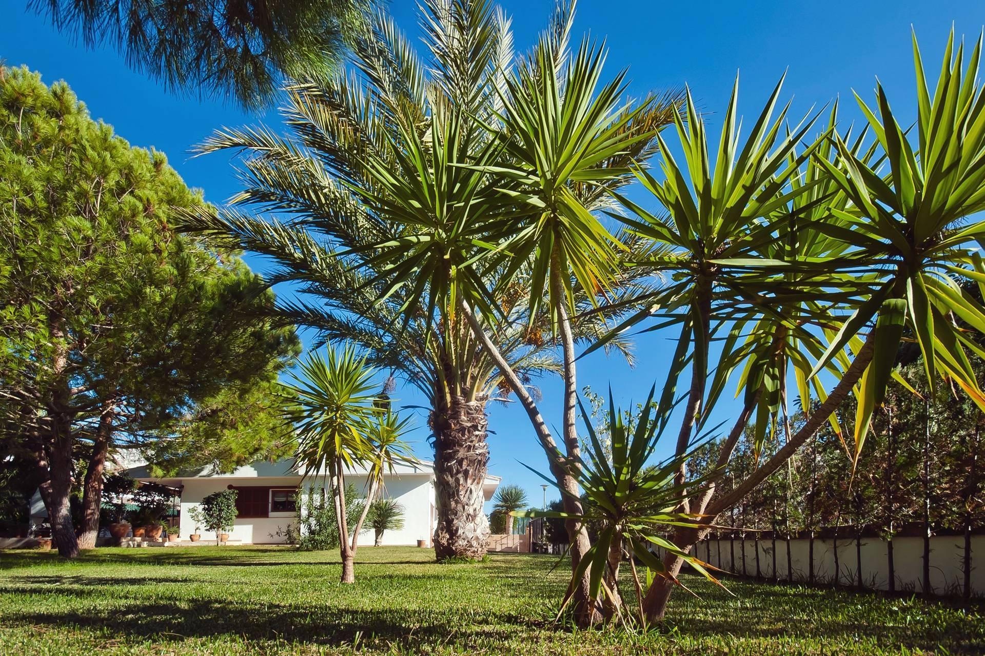 01-232 strandnahes Haus Mallorca Norden Bild 12