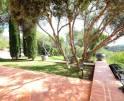 01-98 Extravagantes Ferienhaus Mallorca Osten Vorschaubild 14
