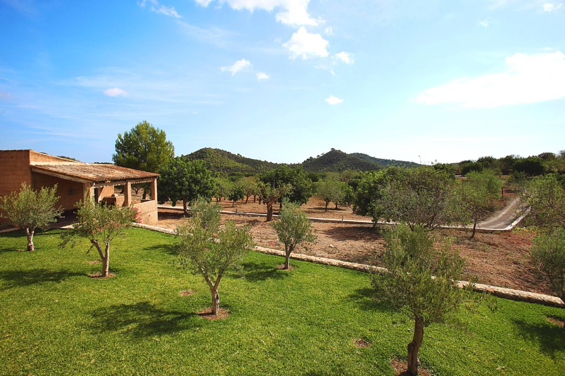 01-159 Ländliches Ferienhaus Mallorca Osten Bild 17