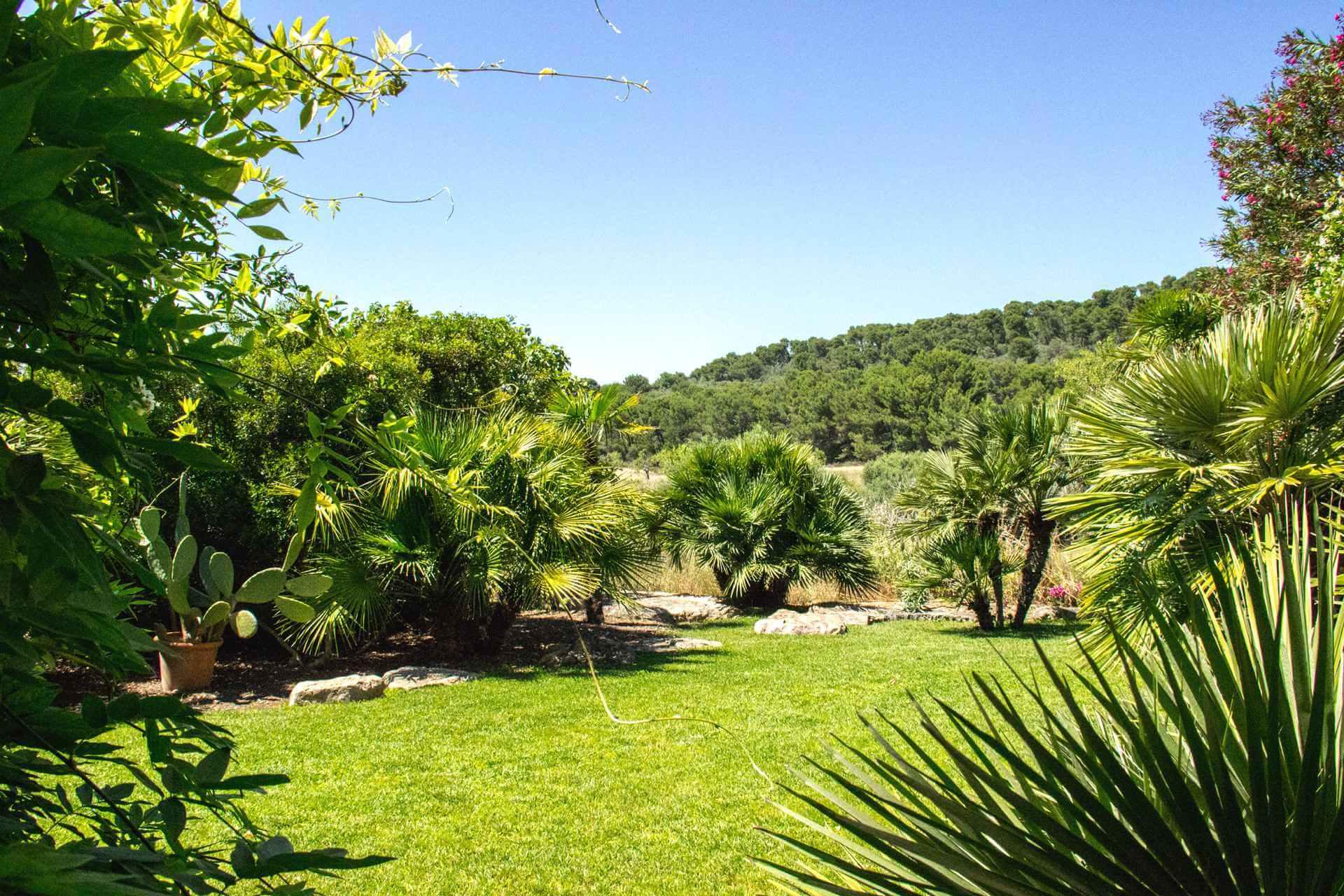 01-322 Villa auf Pferdegestüt Mallorca Osten Bild 23