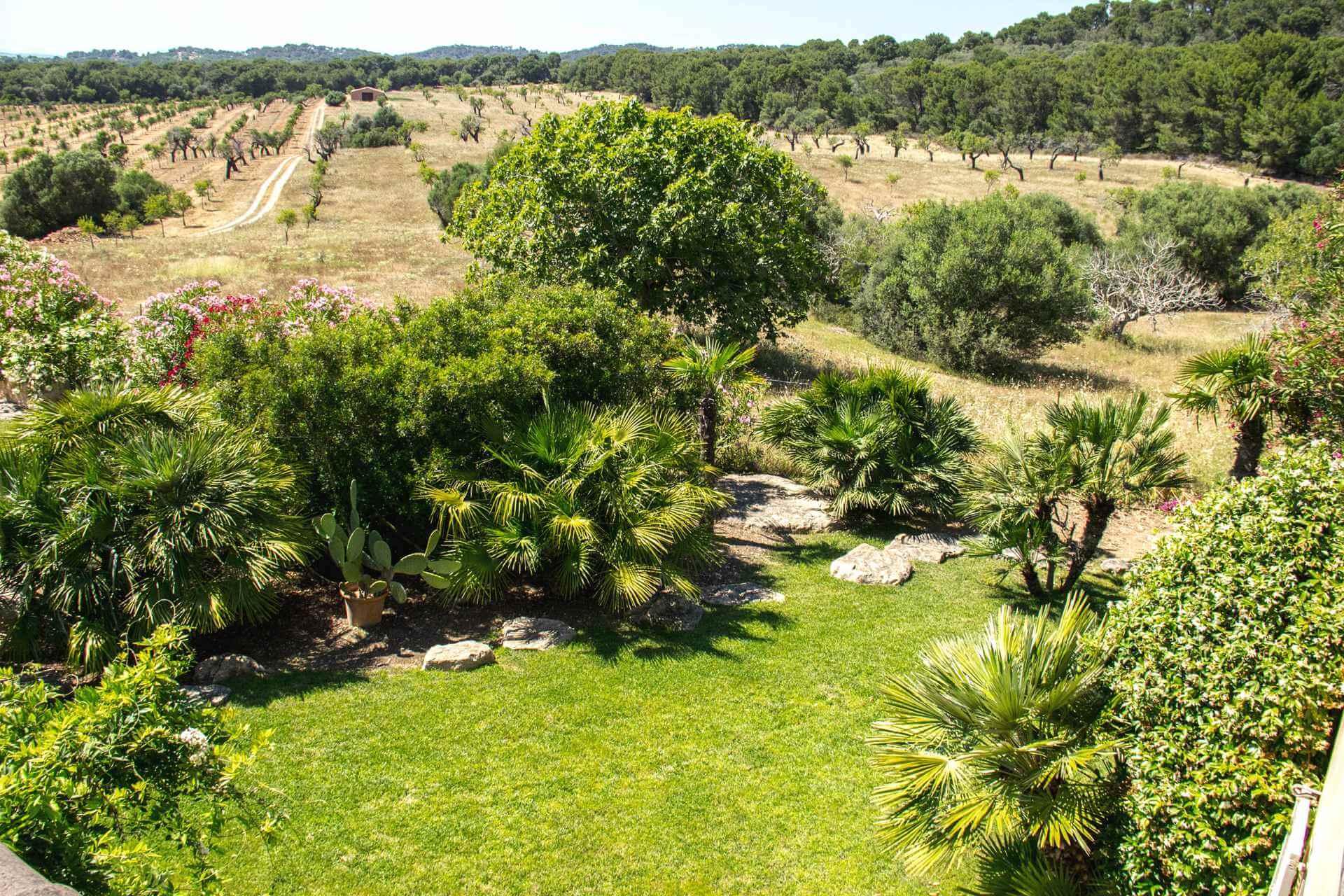 01-322 Villa auf Pferdegestüt Mallorca Osten Bild 24