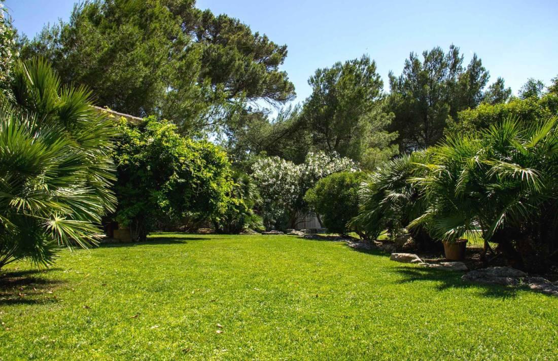 01-322 Villa auf Pferdegestüt Mallorca Osten Bild 25