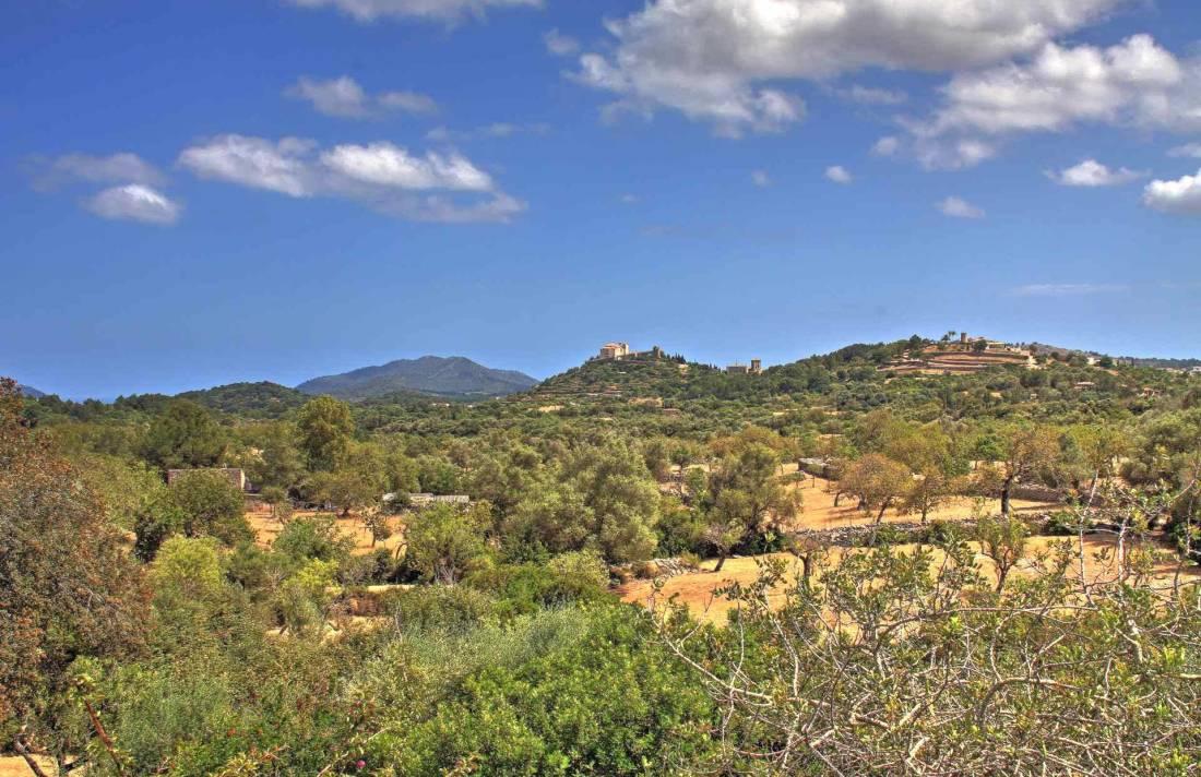 01-51 Authentic Finca Mallorca Northeast Bild 27