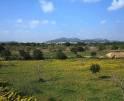 01-38 Mallorquinische Finca Mallorca Osten Vorschaubild 28