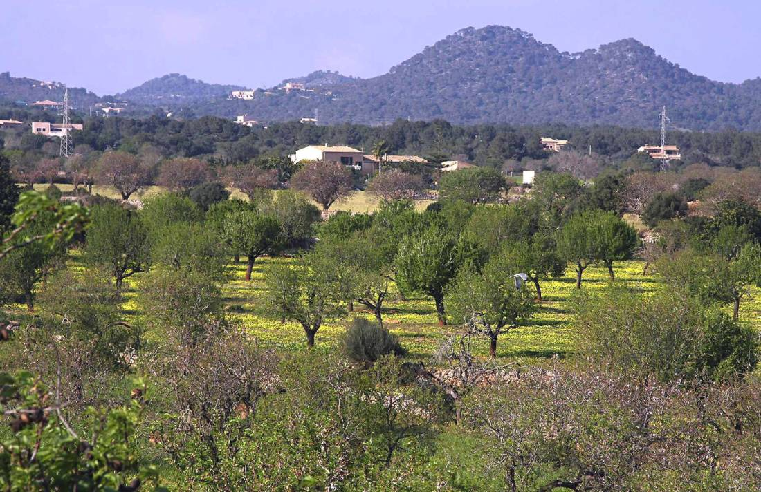 01-58 Moderne Finca Mallorca Osten Bild 27