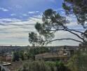 01-323 exklusives Herrenhaus Südwesten Mallorca Vorschaubild 30