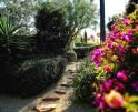 01-95 Ferienhaus Mallorca Süden mit Meerblick Vorschaubild 33