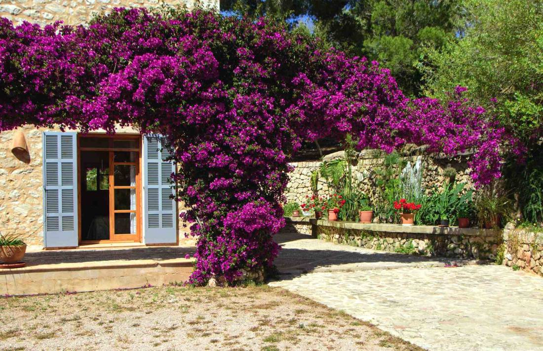 01-147 idyllic Finca Mallorca east Bild 33