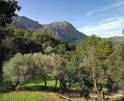 01-130 Quaint Finca Mallorca North Vorschaubild 33