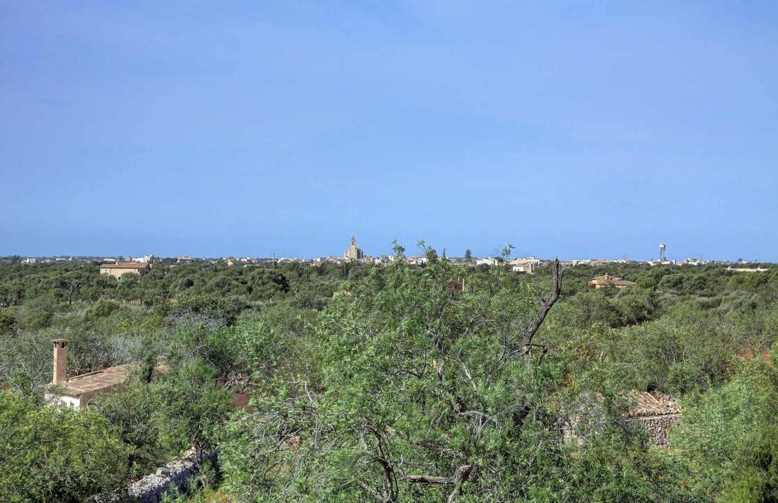 01-259 Finca Mallorca Süden mit Pool Bild 33