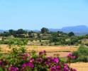 01-147 idyllische Finca Mallorca Osten Vorschaubild 34