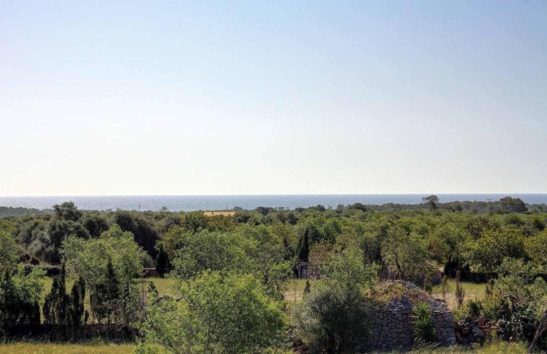 01-259 Finca Mallorca Süden mit Pool Bild 34