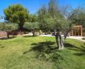 01-138 wintertaugliche Finca  Mallorca Osten Vorschaubild 34