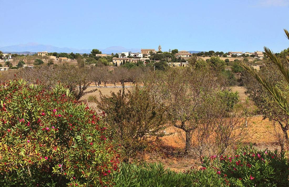 01-132 Urige Finca Mallorca Osten Bild 34