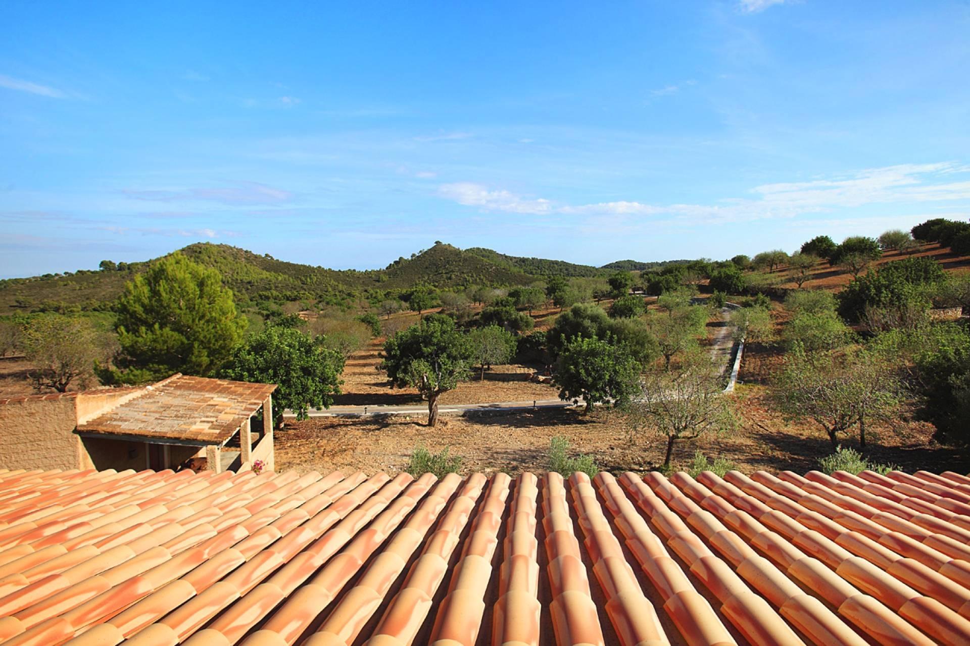 01-159 Ländliches Ferienhaus Mallorca Osten Bild 35