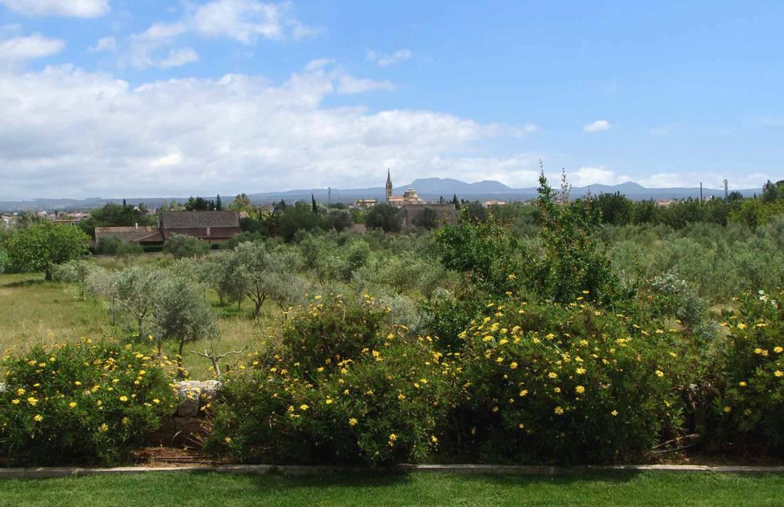 01-153 exklusive Finca Mallorca Zentrum Bild 40