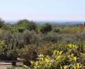 01-33 Großzügiges Ferienhaus Mallorca Osten Vorschaubild 39