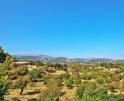 01-209 Edle Finca Mallorca Norden Vorschaubild 40