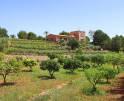 01-138 wintertaugliche Finca  Mallorca Osten Vorschaubild 44