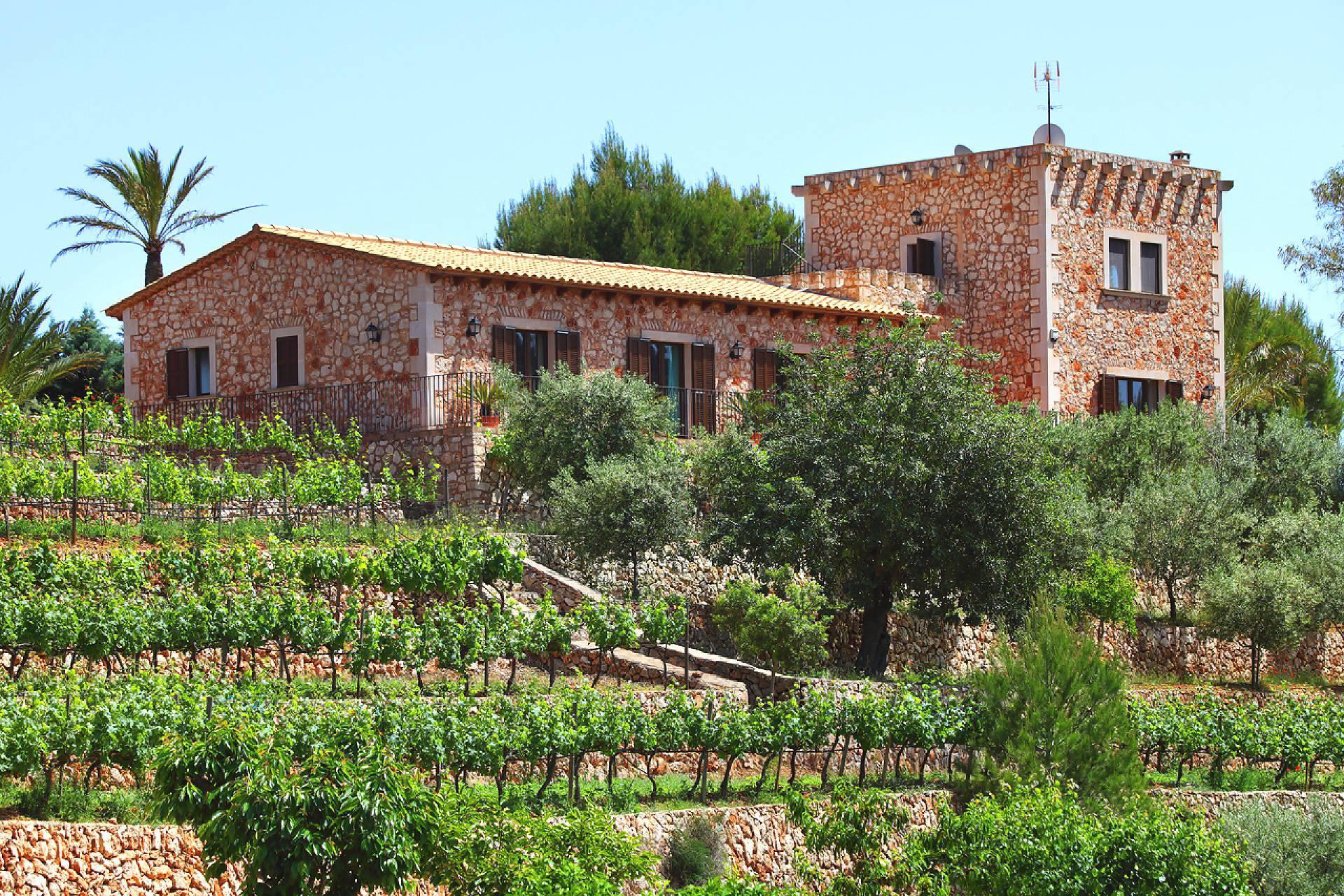01-138 wintertaugliche Finca  Mallorca Osten Bild 45