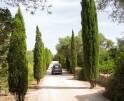 01-07 Exklusive Villa Mallorca Süden Vorschaubild 46