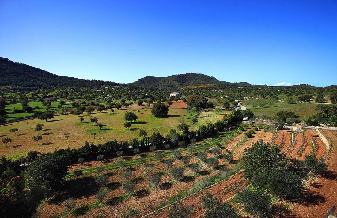 01-138 wintertaugliche Finca  Mallorca Osten Bild 48