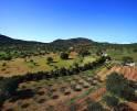 01-138 wintertaugliche Finca  Mallorca Osten Vorschaubild 48