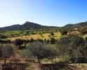 01-138 wintertaugliche Finca  Mallorca Osten Vorschaubild 49