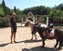 01-87 Luxuriöse Finca Mallorca Zentrum Vorschaubild 49