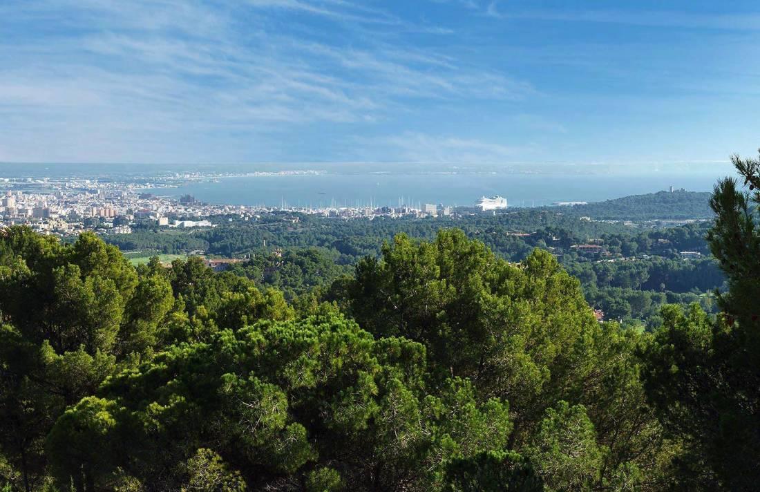 01-280 großzügige Villa nahe Palma de Mallorca Bild 52
