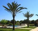 01-66 Rustikale Finca Mallorca Osten Vorschaubild 7