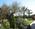 01-66 Rustikale Finca Mallorca Osten Vorschaubild 10