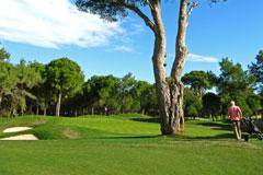 Golfplatz_0