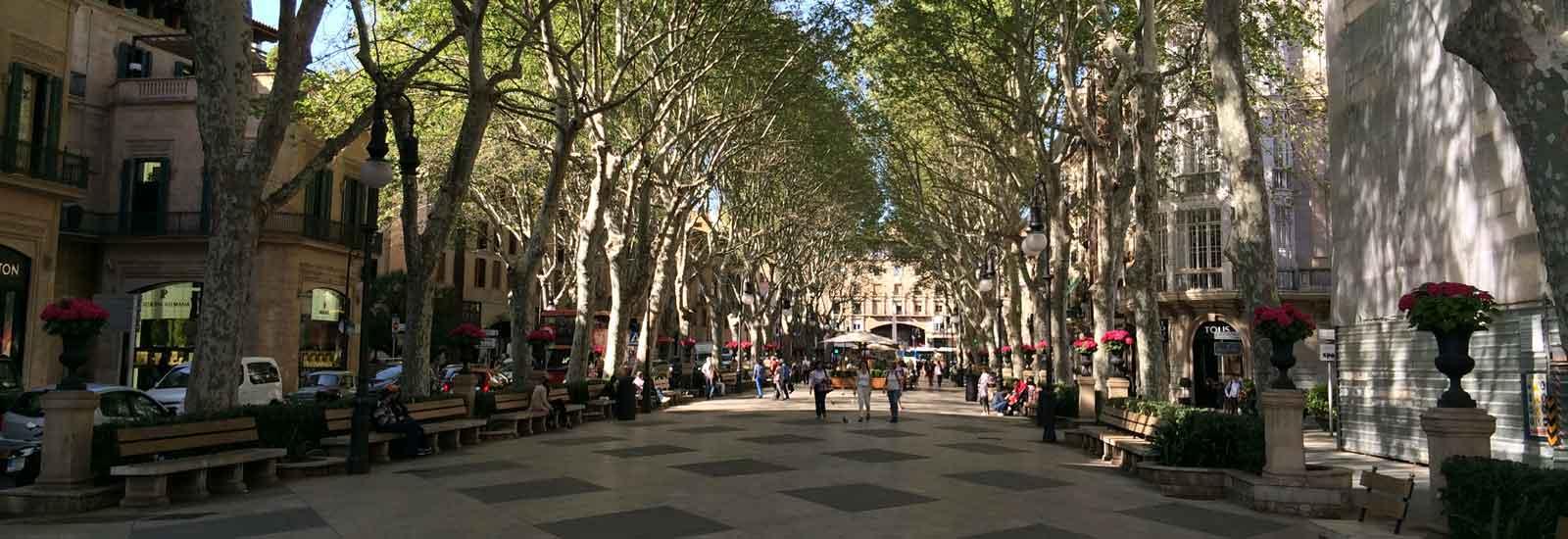 Kostenloses-Wifi-in-Palma-de-Mallorca