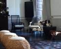 01-72 Luxus Villa Mallorca Westen Vorschaubild 7