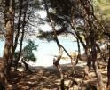 01-68 Moderne Ferienwohnung Mallorca Osten Vorschaubild 20